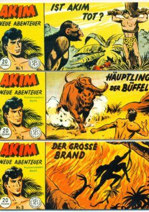 Akim Neue Abenteuer Piccolos 1-197 Hethke